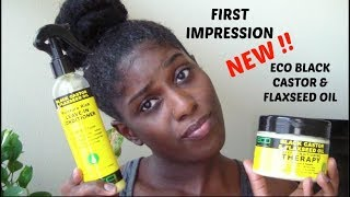 FIRST IMPRESSION ON ECO STYLER CASTOR & FLAXSEED OIL | HANGINGWITHLO