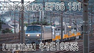 【甲種輸送】EF66 131<キヤE195系>甲種輸送 2020年4月21日 相模貨物駅 中郡大磯町高麗