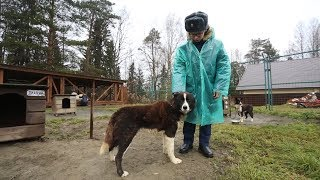 Урок арктической подготовки для кадетов