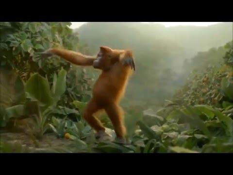 Приколы с Животными. Обезьяны танцуют Хоп Хэй!!!!!! СМОТРИМ ВСЕ!!!!