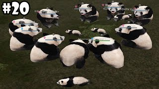 Wild Animals Online - Group of Pandas - Android/iOS - Gameplay Episode 20