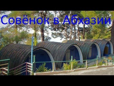 """""""Бесконечное лето"""" в Абхазии #СовенокЭтоАтмосфера"""
