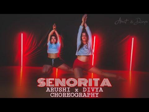 Shawn Mendes Camila Cabello - Señorita  Arushi X Divya Choreography