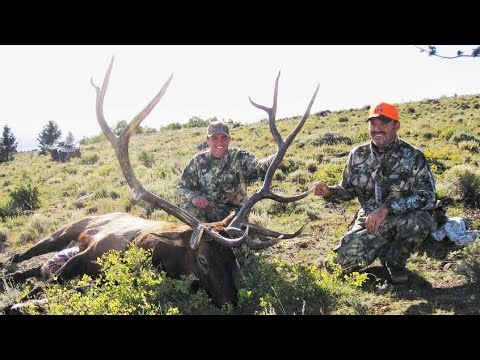MY DADS BULL ELK HUNT!! Elk Hunting The Rut