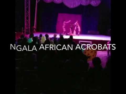 Ngala African Acrobats