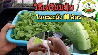 Hydroponics home garden ||ผักไฮโดรโปนิกส์ :วิธีการเตรียมปุ๋ย AB ,grow vegetable at home. ep.44