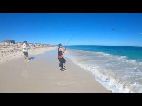 Cervantes 2020 Fishing Trip