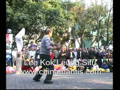 KWONGSAI MANTIS - LEE KOK LEUNG SIFU - SPEAR 2003