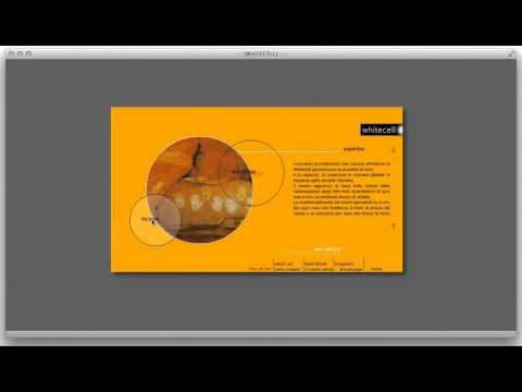 Sito web | Whitecell Agenzia di pubblicità e comunicazione integrata | Torino TO