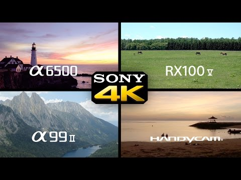 Sony a6500 + a99ii + RX100V + Handycam 4K Footage Compilation