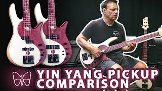 Yin Yang Pickup Comparison! EMG P/J's vs. Seymour Duncan Dual Coils
