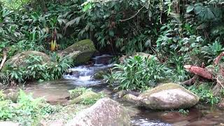 Streams and Rivers Are Primary Water Sources for Arhuaco Families in Sierra Nevada de Santa Marta
