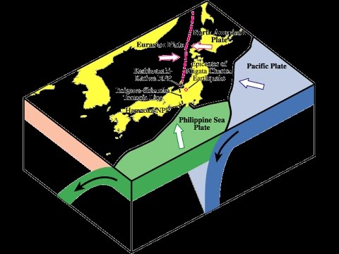 Dumping Radioactive Waste, New Active Fault off Seabed Japan Fukushima Update 1/5/13