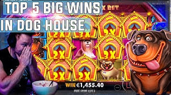 The Dog House  top 5 BIG WINS - Record win on slot