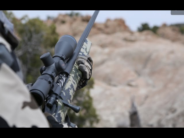 What's the Best Long Range Hunting Cartridge?