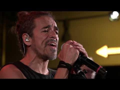 Café Tacvba - El Baile y El Salón (Live on KEXP)