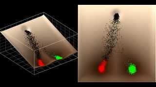 Animation 7.  Cell interaction -- positive feedback (invisible wind)