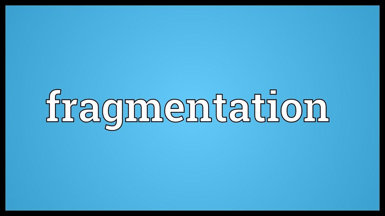 Virtual memory paging fragmentation asexual reproduction