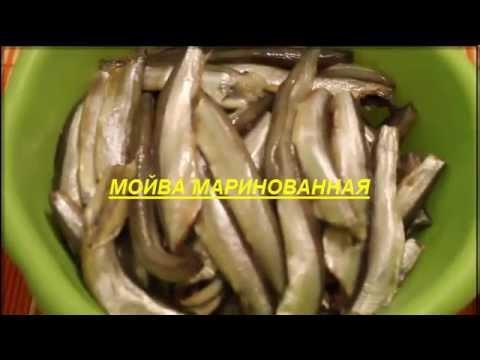 маринованная мойва