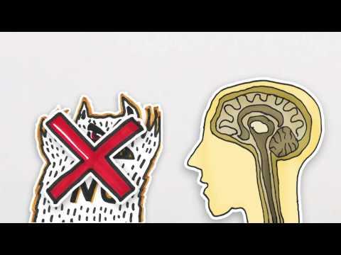 medizin psychologie studium