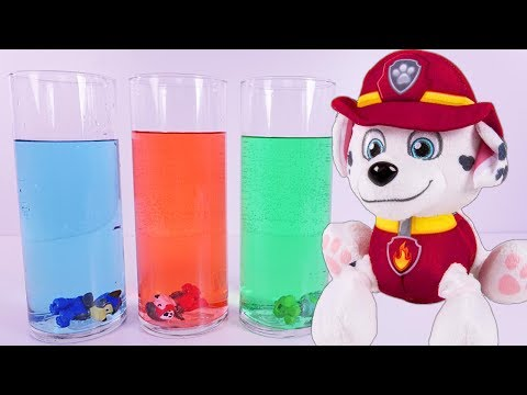 Thumbnail: PAW PATROL Science Experiment Learning COLORS - Paw Patrol Full Episodes