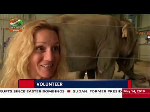 Good News India- A hospital for elephants