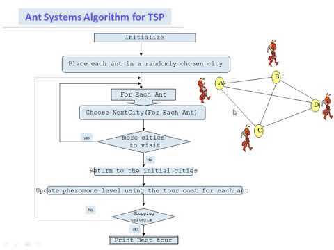 Traveling Salesman Problem Using Ant Colony Optimization Part 2 In