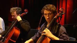 Trio Transitorio - O Rubor Sanguinis