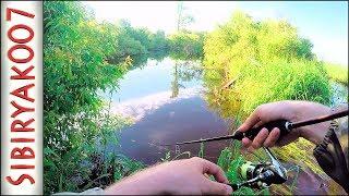 Рыбалка на Микроречке. Ультралайт. Наедине с Природой. Сломал спиннинг. Окунь, Елец, Щука, Язь