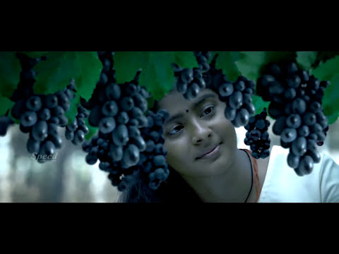 Latest Malayalam Movie Full 2017   Latest Romantic Movie   New Thriller Full Movies 1080 HD 2017
