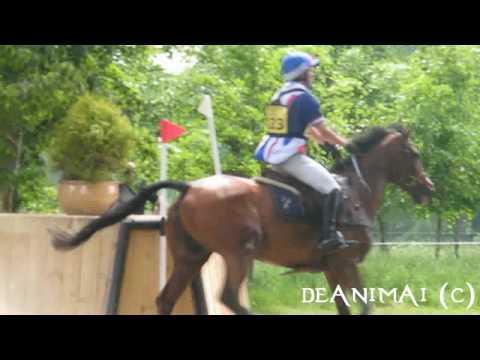 Bramham Horse Trials 2010||Cross Country