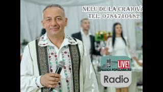 Nelu de la Craiova - Iata-ti nepotelul mama Colaj muzica petrecere NOU 2017