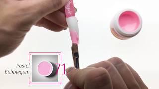 Overview of Pastel Bubble Gum