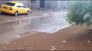 بشار ، امطار غزيرة 24.08.2016