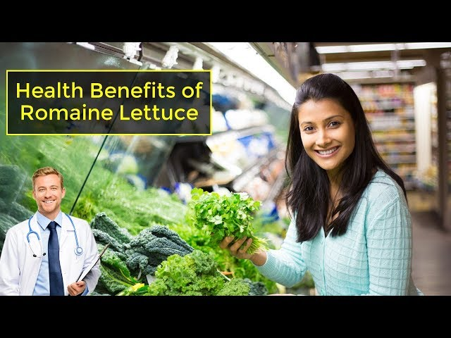 Health Benefits of Romaine Lettuce