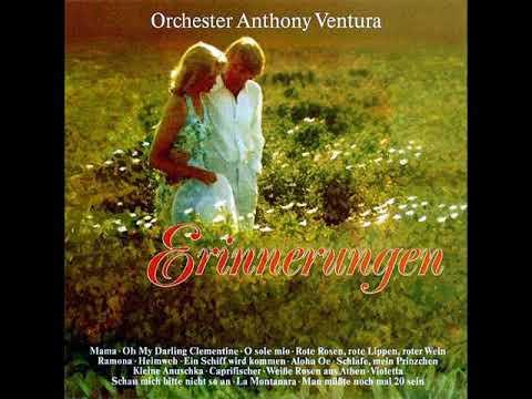 ORCHESTER ANTHONY VENTURA - ERINNERUNGEN [LP]
