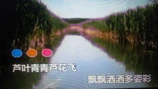 Download Video 芦叶青青芦花白【WB】(甫人-陈燕妮)-20180416 MP3 3GP MP4