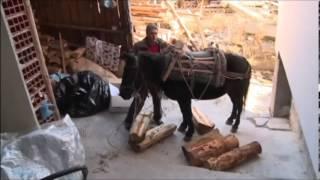 Помаците - българите мюсюлмани