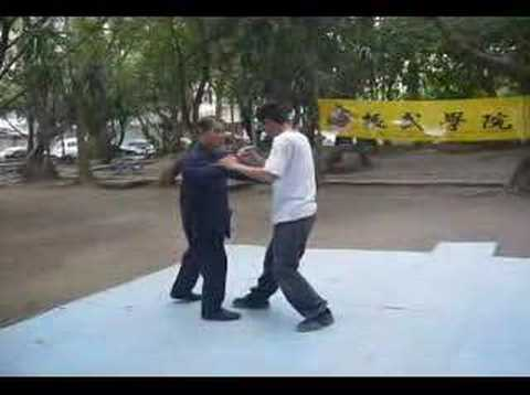 Mr. Wang Chieh's Push Hands Demo