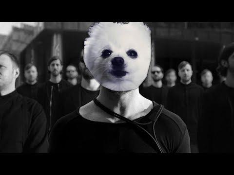 Imagine Doggos - Thunder