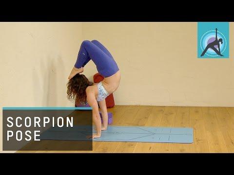 Dolphin into Scorpion Pose, Yoga tutorial with MacKenzie Miller