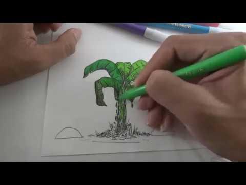 Learn Coloring Banana Tree Colours For Kids Mewarnai Pohon Pisang