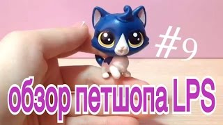 № 9 ОБЗОР ПЕТШОПА LPS синий кот