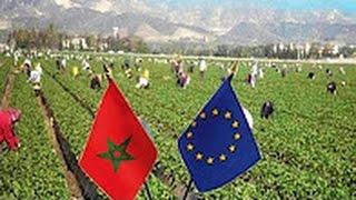 شاهد الاتحاد الاوروبي ينصف المغرب و يصفع الجزائر و البوليساريو بقوة الاخبار المغربية