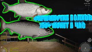 Русская Рыбалка 4 фарм на реке Волхов 750 монет в час Russian Fishing 4
