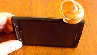 Усилитель звука для мобильника из ракушки. (DIY. Shell Phone Amp.)