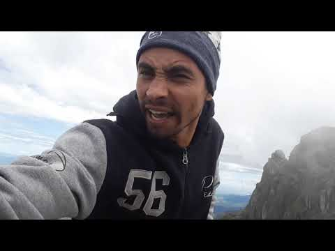 Gralhas da montanha 😂😂😂🕊🕊
