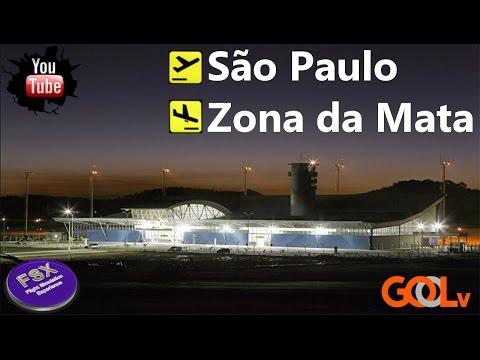 VOO BOEING 737 GOL  | São Paulo ✈ Zona da Mata | Pedido  assinante | Voegolv.org | IVAO