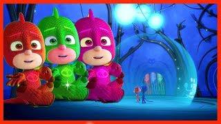 Learn Colors PJ Masks #03 Catboy Owlette Gekko Coloring - Edu Kids Alphabet Song Nursery Rhymes