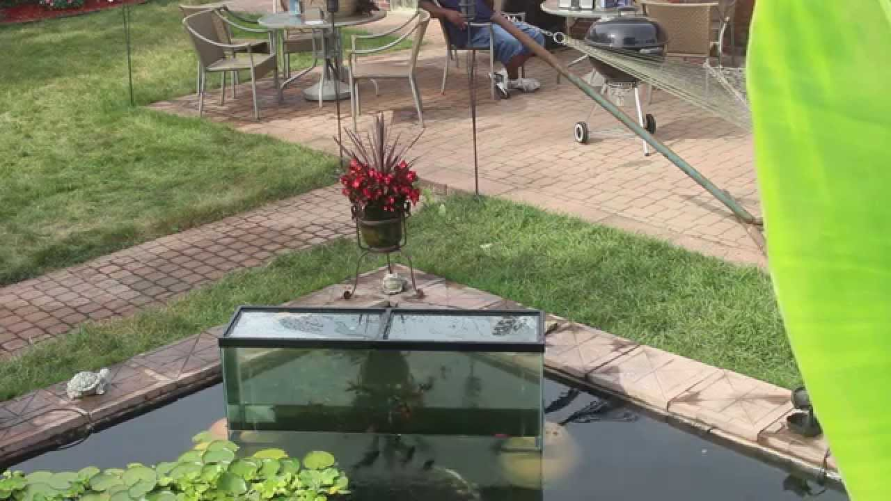 The inverted tank trick part 3 youtube for Inverted fish tank